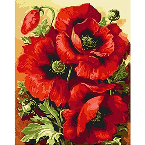 DIY Oil Painting Paint by Number Kits for Home Wall Decor for Adults Kids Beginner Level 15.78 x 19.68 Inches , Red Poppy
