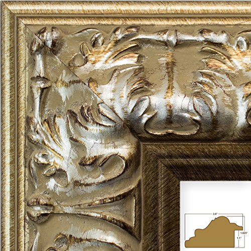 Craig Frames 8081 16 by 20-Inch Picture Frame, Ornate Finish, 3.6-Inch Wide, Antique Silver Leaf, Acrylic Facing, Foamcore - Antiqued Silver Leaf