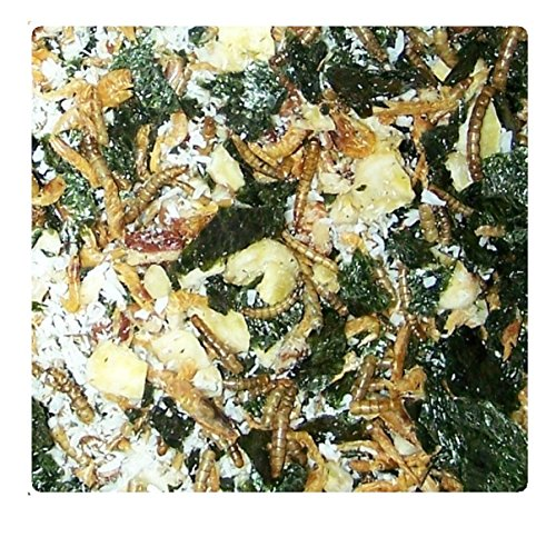 rab Food by Eco Animal Pet Products - Wholesome Mix of Fish, Ocean Plants, Fruit, Bugs, and Nuts - 30 servings (Diet Hermit Crab Food)