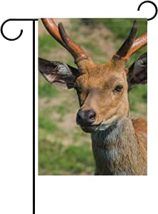 Tarity Cute Deer Garden Flags Spring Summer Double Sided Polyester Yard Flag Decorative Welcome Hello House Flags Home Farmhouse Outdoor Decor 12 x 18 in