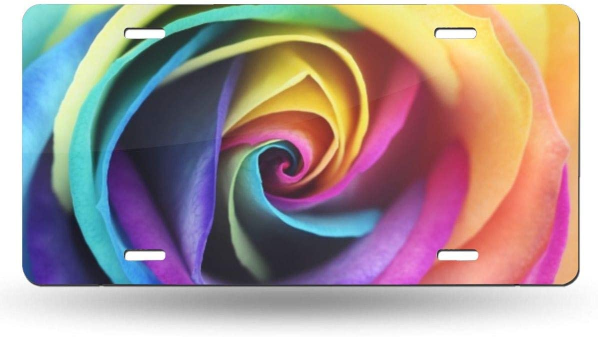 Hipster Rainbow Rose Flower Car Tag Cover Decorative License Plates for Front of Car Durable Metal Car Plate for Women//Girls//Men//Boys Vanity Gifts 6 X 12 in Dujiea License Plate Aluminum