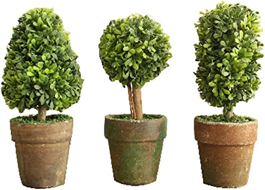 Amazon Com Pvc Topiary In Pot Set Of 3 Styles Artificial Plant