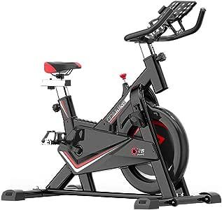BF-DCGUN Bicicleta de Spinning para el hogar, Ejercicio físico ...