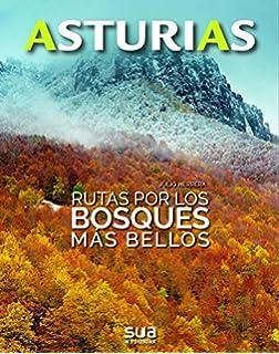 Rincones que te sorprenderan: 1 (Asturias): Amazon.es: Gonzalez Prieto, Luis Aurelio, Palomares Gonzalez, Loli, Gonzalez Palomares, David: Libros