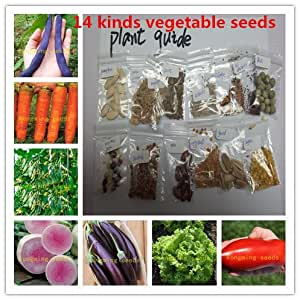 14 kinds 1600+ vegetable seeds ,NO-GMO seed vegetables include chili tomato etc home garden plant