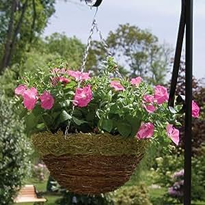 Pride Garden Products 14en. Rojo rama y Fern maceta colgante con cadena