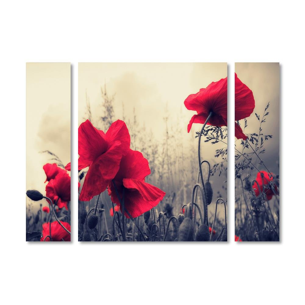 Trademark Fine Art PSL0113-3PC-SET-LG ''Red For Love'' Décor, Large