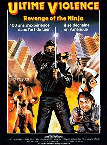Amazon.com: Revenge of the Ninja (French)  POSTER (11