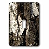 3dRose Alexis Photography - Texture Bark - Image of sunlit grunge, rough birch bark. Wood texture. Closeup view - Light Switch Covers - single toggle switch (lsp_286567_1)