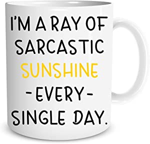 I'm a Ray of Sarcastic Sunshine Everyday 11oz Funny Coffee Mug Sarcastic Novelty Cup Joke For Men Women Office Work Adult Humor Employee Boss Coworkers