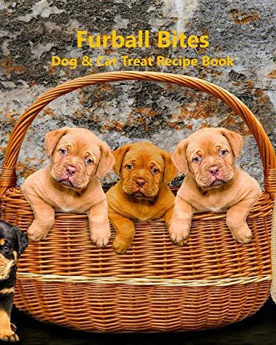 Furball Bites: Dog & Cat Treat Recipe ()