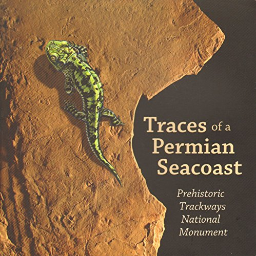 Traces of a Permian Seacoast: Prehistoric Trackways National Monument - Seacoast Natural
