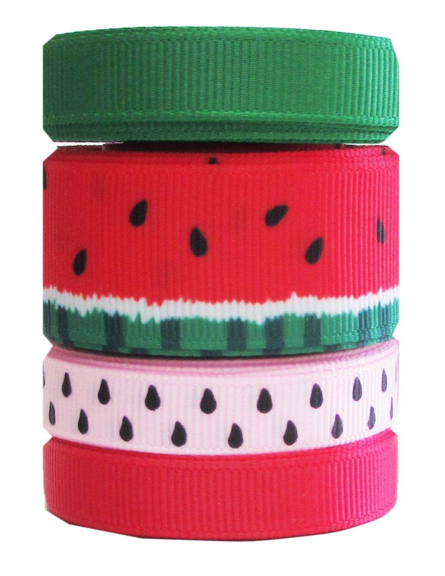summer watermelon grosgrain ribbon hipgirl
