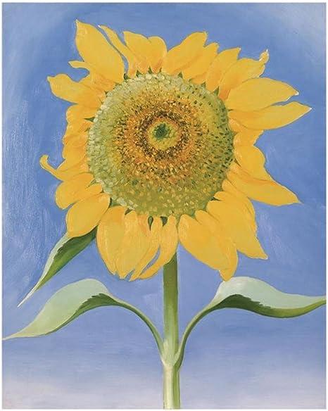 Sunflower Art Print Home Decor Wall Art Poster C