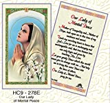 Our Lady of Mental Peace Laminated Prayer Cards - Pack of 25 - HC9-278E