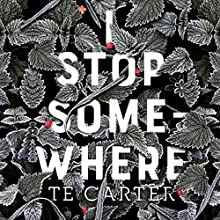 I Stop Somewhere Audiobook by TE Carter Narrated by Laurel Schroeder