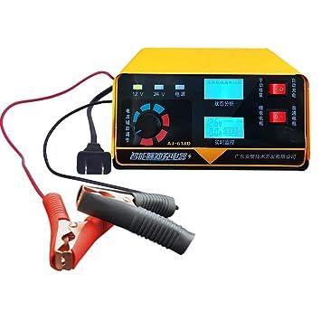 ATpart Cargador de batería de Coche de Motocicleta 12V 24 V ...