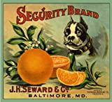 Riverside Security Boston Terrier Dog Orange Citrus Fruit Crate Box Label Art Print