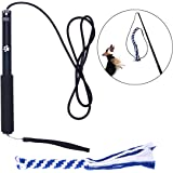 UEETEK Interactive Dog Toys,Extendable Flirt Pole Funny Chasing Tail Teaser and Exerciser for Pets Size L (Black)