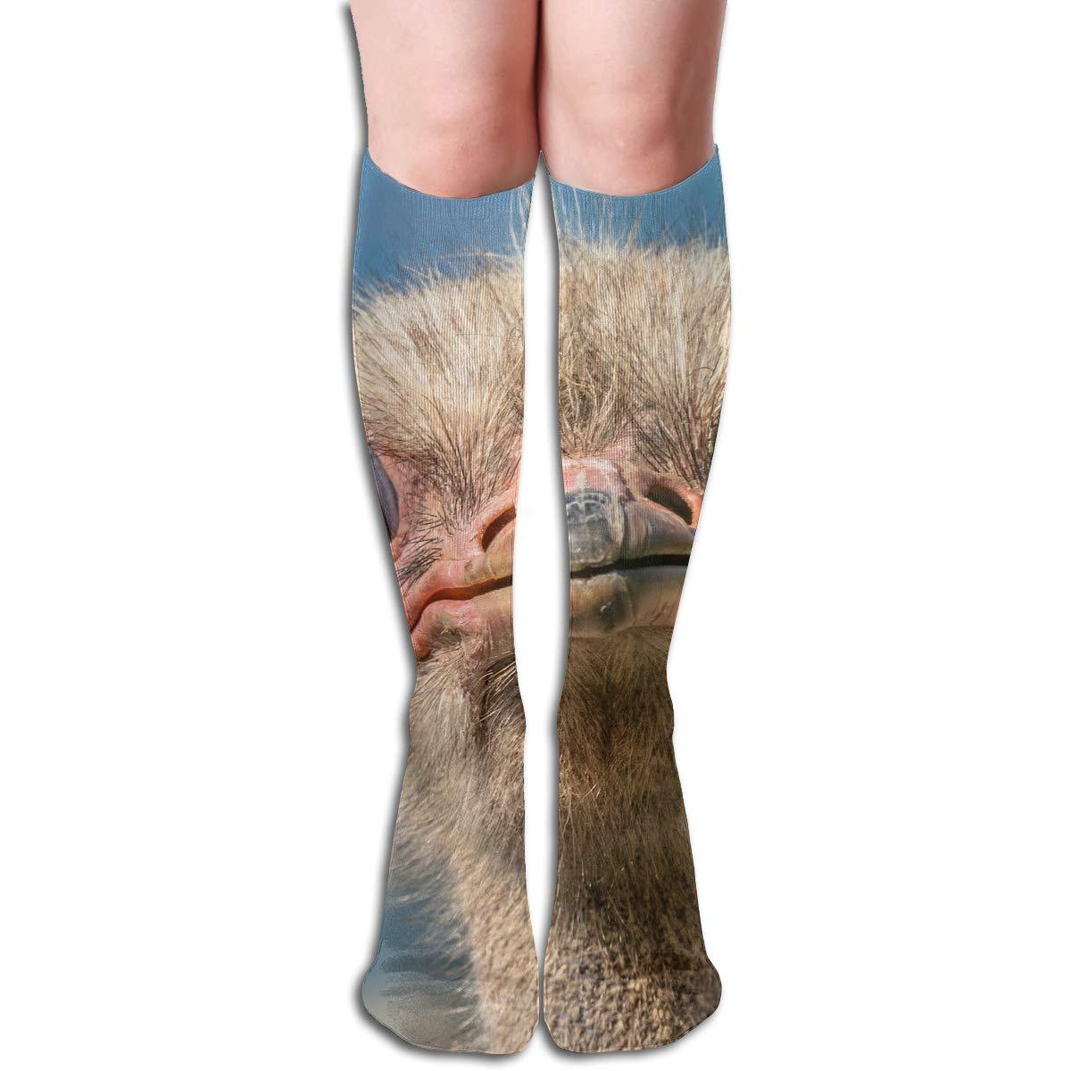 Girls Socks Over Knee Palm Tree Winter Inspiring For Festive