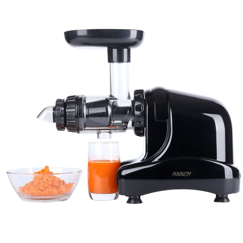 ANNDY Slow Juicer Cold press juicer slow masticating juicer horizontal juicer juice extractor - Black
