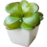 YHmall 4pcs Plantas Artificiales Decoracion Exterior de Suculentas
