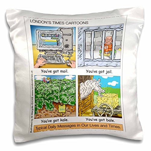 Silly Wordplay (Londons Times Funny Silly Wordplay Cartoons - You ve Got Mail, Jail, Kale, and Bale - 16x16 inch Pillow Case (pc_3434_1))