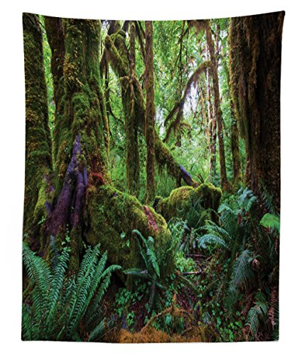 Lunarable Jungle Tapestry Twin Size, Monsoon Tropical Jungle with Bushes Ferns Trees Vegetation Wilderness Land Scene, Wall Hanging Bedspread Bed Cover Wall Decor, 68 W X 88 L inches, Green Brown ()