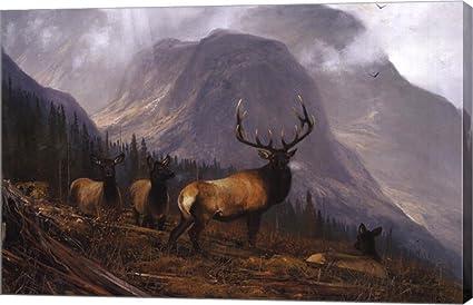 Modern Art Painting HD Print Canvas Rosemary Millette Deer Room Decoration 16x24