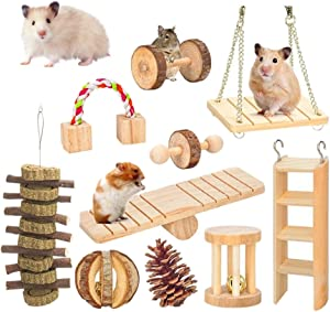 gutongyuan Hamster Chew Toys, Chinchilla Guinea Pig Rabbits Toys Accessories Natural Apple Sticks Wooden Dumbells Exercise Wheels Teeth Care Molar Toy Pack of 10