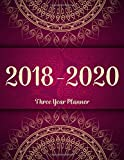 #5: 2018 - 2020 Three Year Planner: Monthly Schedule Organizer - Agenda Planner For The Next 3Years, 36 Months Calendar, Appointment Notebook, Monthly Planner (3 year planner 2018-2020) (Volume 5)