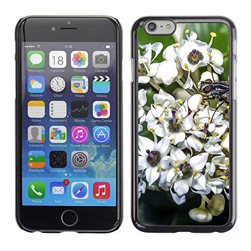 """Premio Sottile Slim Cassa Custodia Case Cover Shell // F00010658 une fleur // Apple iPhone 6 6S 6G 4.7"""""""