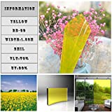 HOHO 0.7mx30m Transparent Yellow Colored Privacy Window Film Heat Control Tint