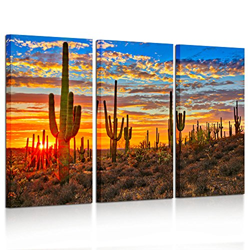 Kreative Arts Large 3 Piece Canvas Wall Art Beautiful Sunset Landscape of National Park Arizona Sonoran Desert Cactus Pictures Stretched and Framed Ready to Hang for Home Office Decor 16x32inchx3pcs by Kreative Arts