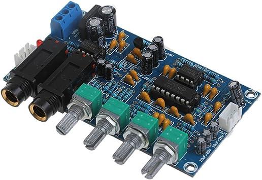 Dual Power Microphone Amplifier Board Sound AMP Module Digital Reverb Plate