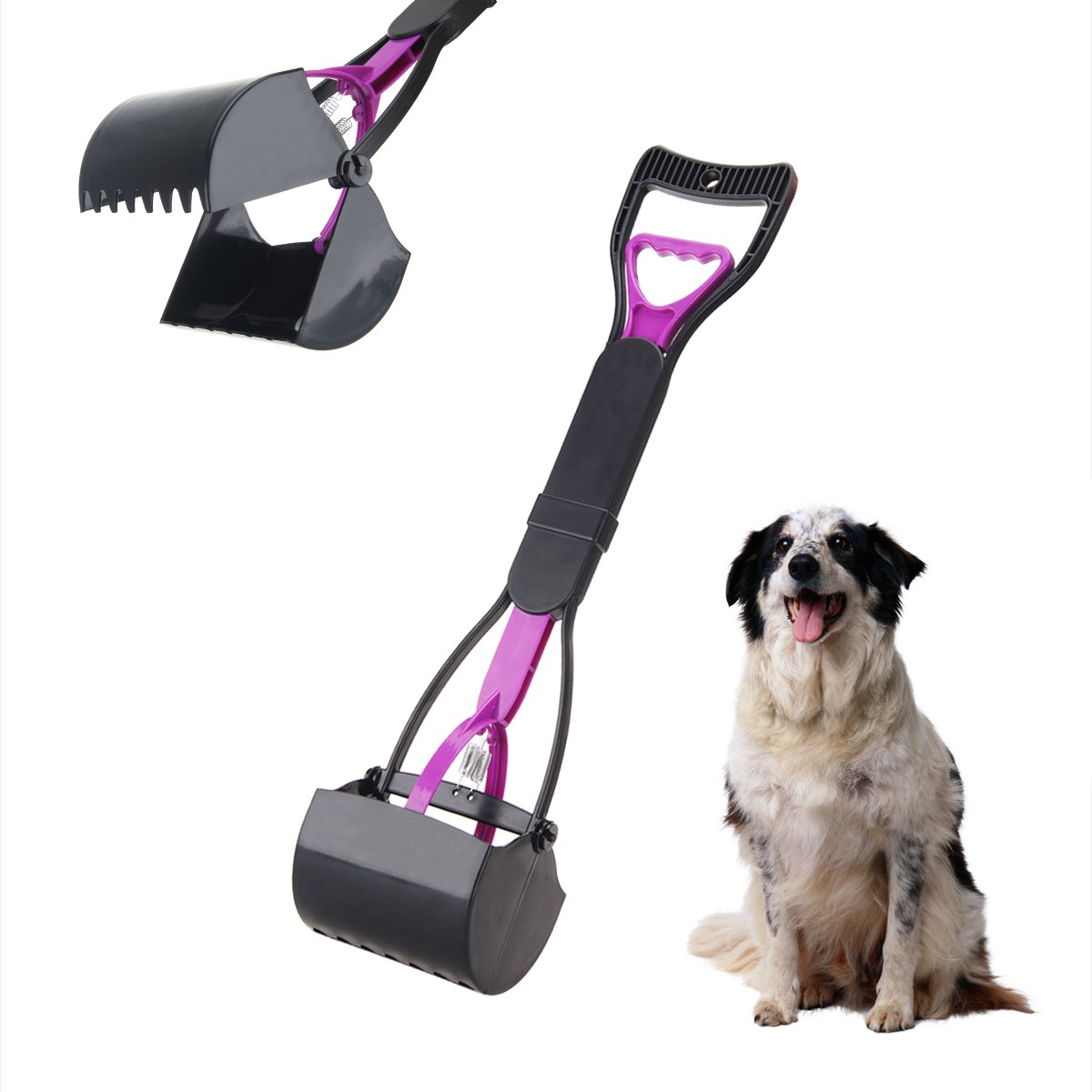 Dpowro Pet Pooper Scooper Small Breeds Poop Pickup Clip Scoop Yard Cleaner Animal Pets Dog Cat Waste Pickup Remover with A Wide Handle Durable Plastic Purple Black
