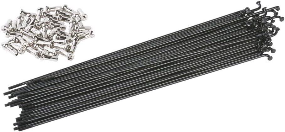 Baoblaze 12Pcs Bike Bicycle Stainless Steel Black Spoke Spokes Whit Copper Nipples 177mm-273mm