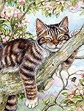 Caroline's Treasures CDCO0241GF Sleepy Cat by Debbie Cook Garden Flag, Small, Multicolor