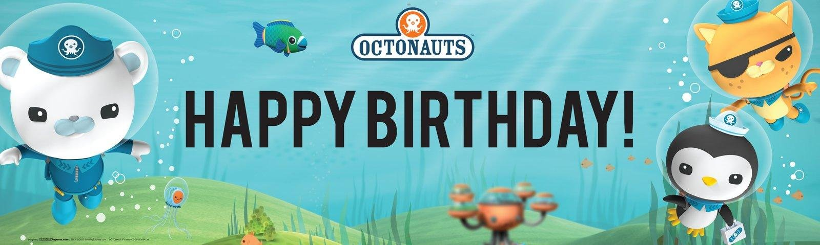 The Octonauts Party Supplies - Vinyl Birthday Banner 18'' x 61''