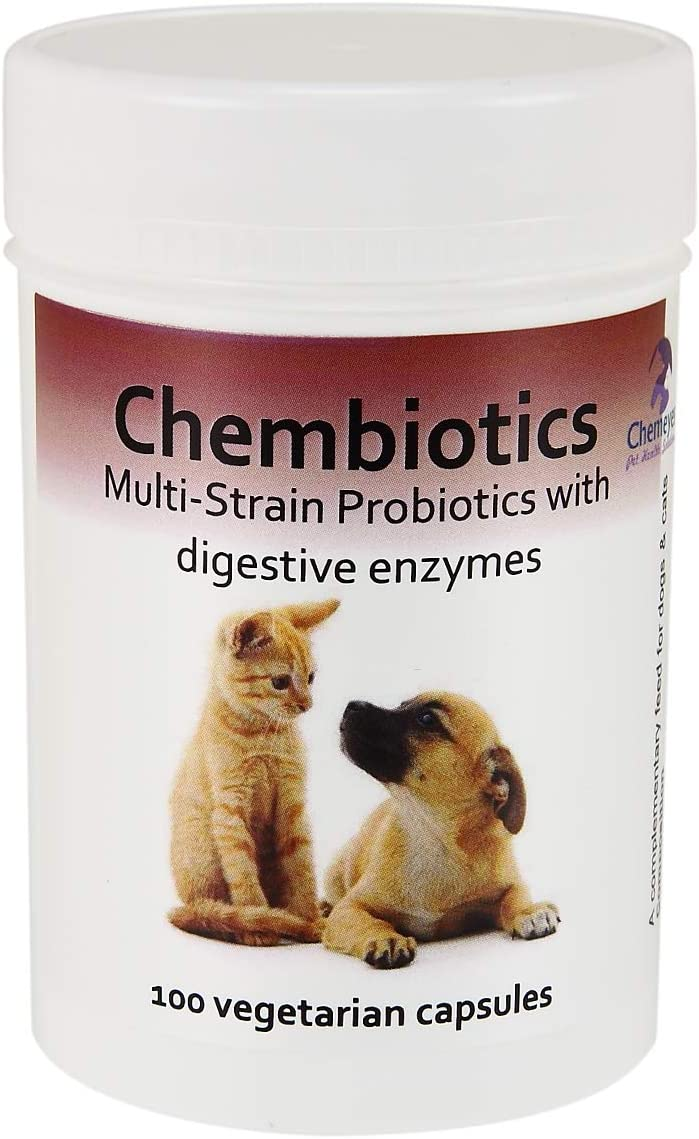 Chembiotics - Probióticos de múltiples cepas con enzimas digestivas para Perros y Gatos: Amazon.es: Productos para mascotas