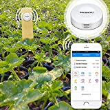 Wireless Bluetooth Hygrometer & Thermometer for Apple/Android with Alart for Grow tent