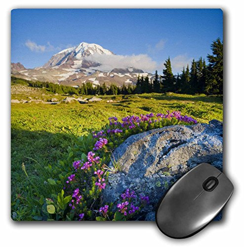 3dRose LLC 8 x 8 x 0.25 Inches Mouse Pad, Mountain Heather at Spray Park Mt Rainier Washington Gary Luhm (mp_95665_1)