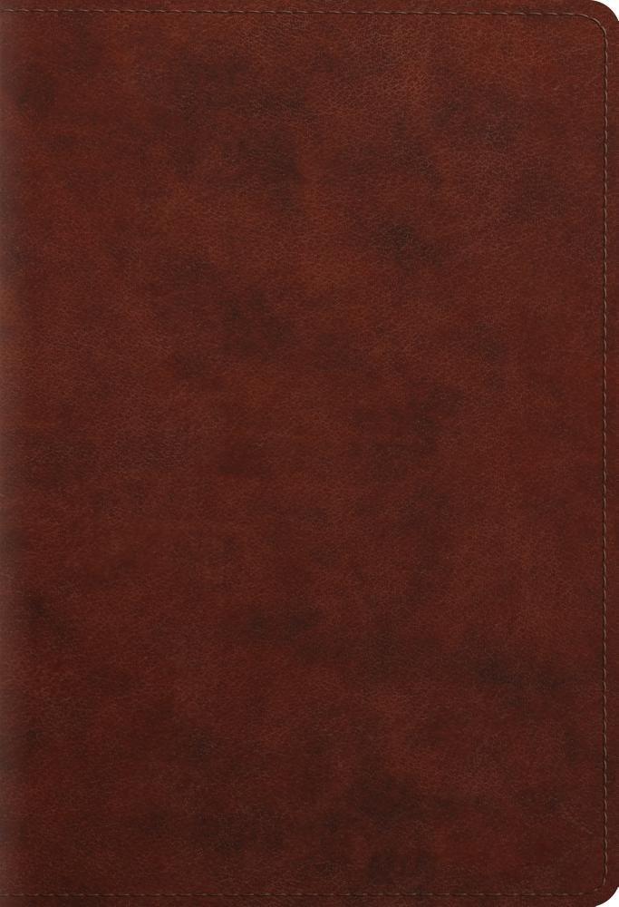 Student Study Bible TruTone Chestnut