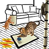Best Scratching Posts - Cat Scratch Protection, Cat Scratching, Cat Scratch Shields Review