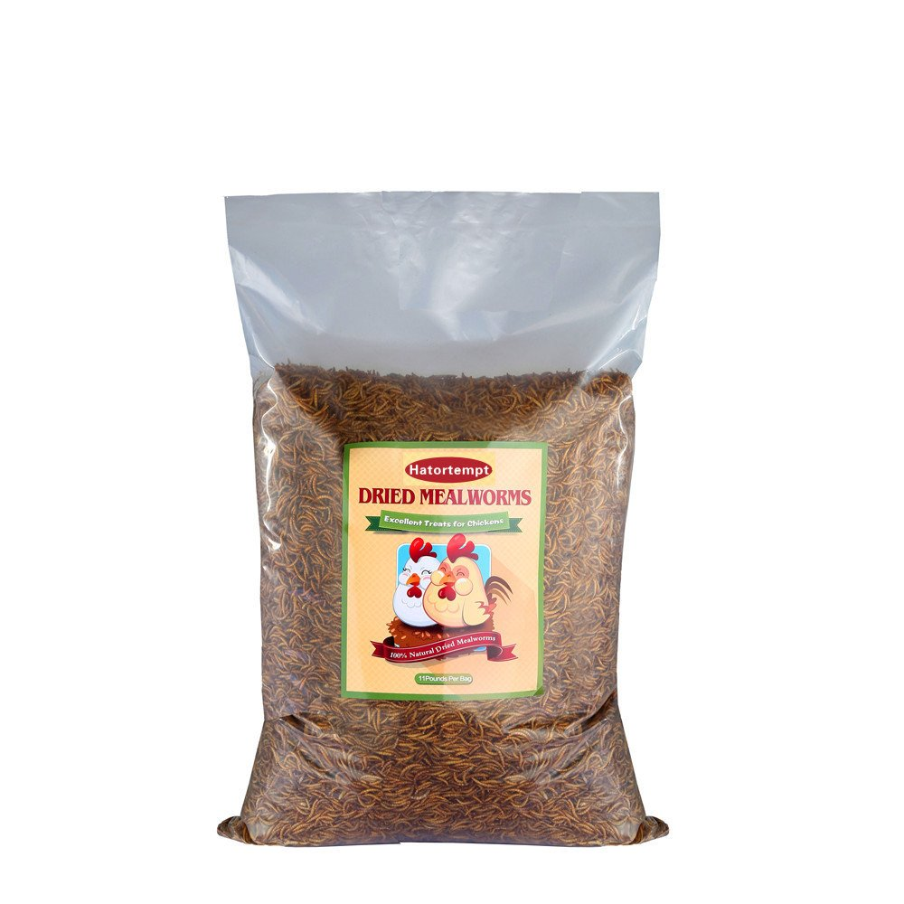 22 LB Bulk Dried mealworms for Birds food, Chicken Feed, Retiles Food, and more by Gardenpt
