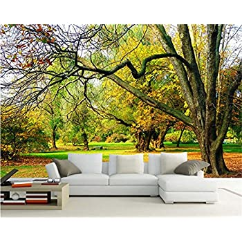 Image of Ai Ya-bihua 3D Wallpaper Naked Eye 3D Canadian Forests Autumn Beautiful View Continental Living Room Bedroom TV Background Wallpaper Home and Kitchen