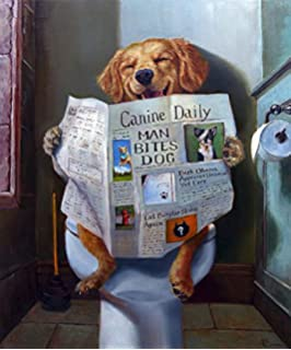 The Stupell Home D/écor Collection Dog Reading The Newspaper On Toilet Funny Painting Framed Giclee Texturized Art 11 x 14 Multi-Color Stupell Industries pwp-183/_fr/_11x14