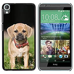 PC/Aluminum Funda Carcasa protectora para HTC Desire 820 Beagle Pug Puggle Puppy Dog Breed / JUSTGO PHONE PROTECTOR