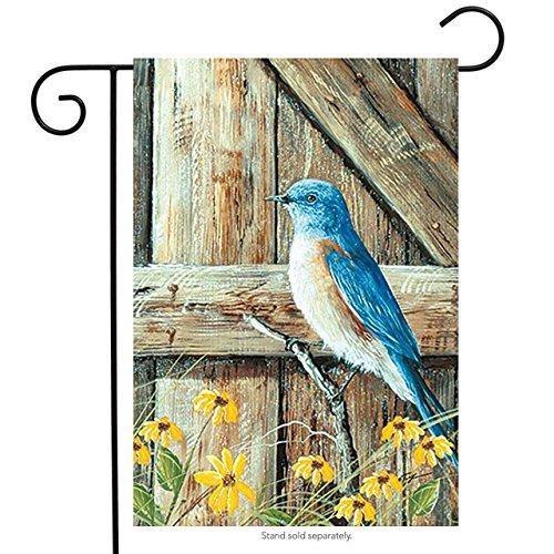 QQshiqI Bluebird Song Seasonal Garden Flag Summer Birds 12.5