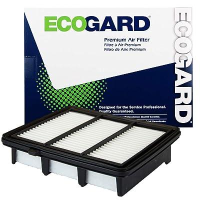 ECOGARD XA11569 Premium Engine Air Filter Fits Honda Accord 1.5L 2020-2020: Automotive
